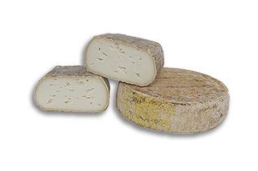 logo ossola salumi formaggi